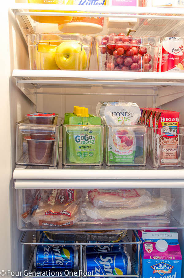 refrigerator-organization-project-3