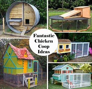 fantastic chicken coop ideas SM