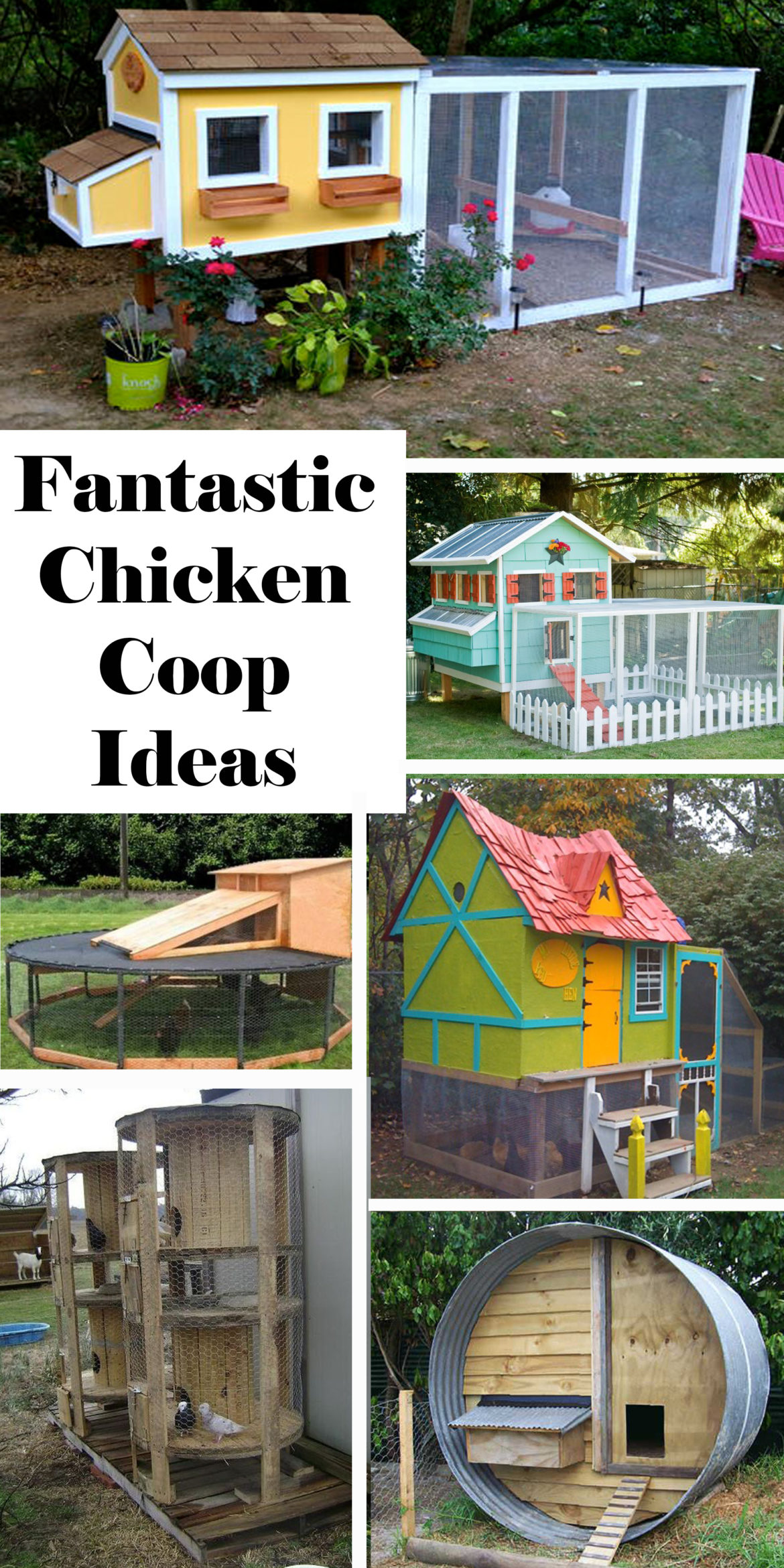 fantastic-chicken-coop-ideas