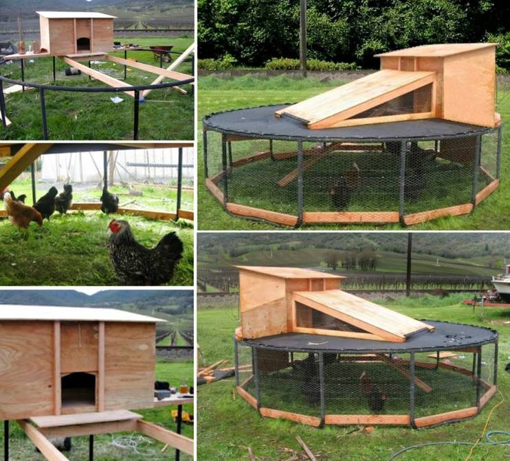 trampoline-chicken-coop3-wonderfuldiy