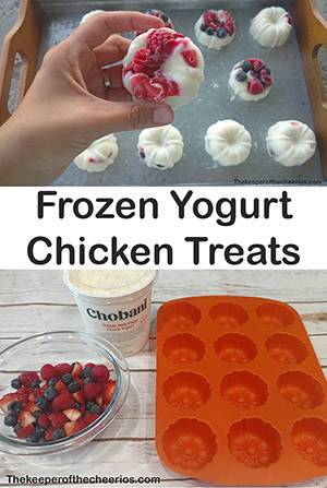 frozen yogurt chicken treat sm