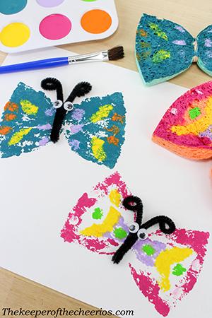Butterfly Sponge Art smm
