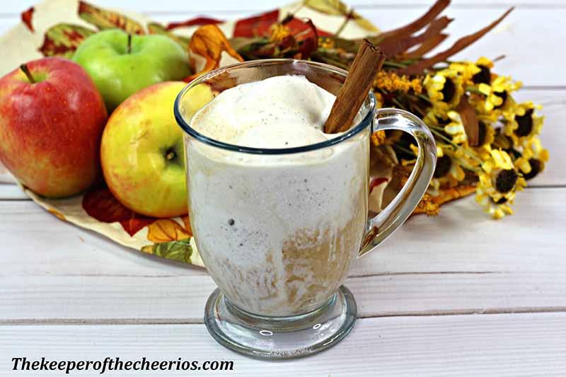 Apple-cider-float-2