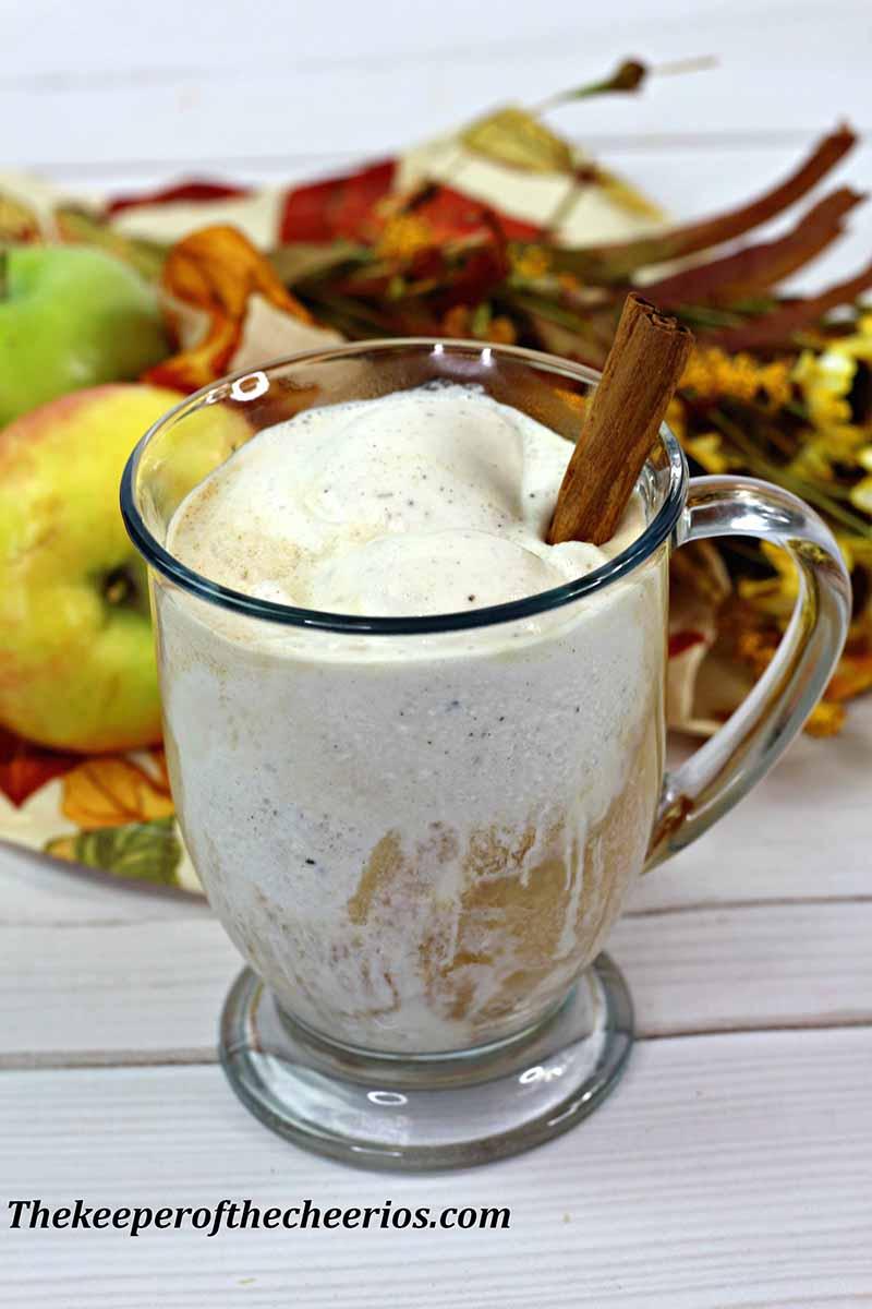Apple-cider-float-3