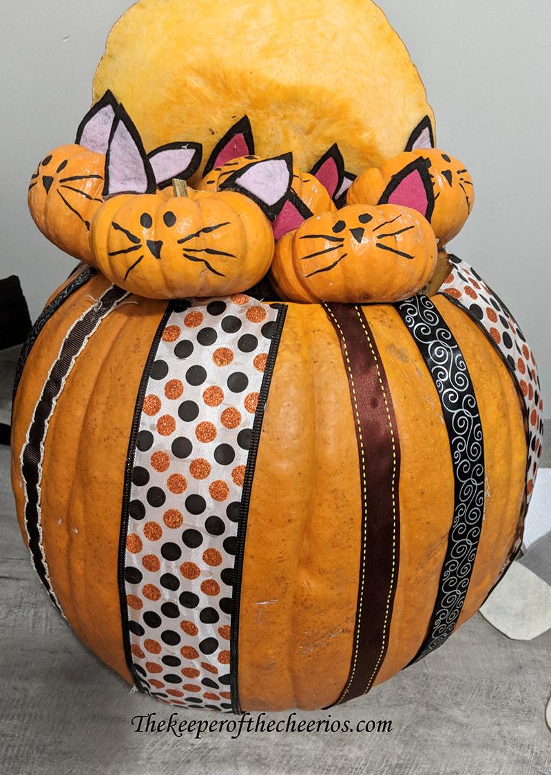 kitty-pumpkins-2