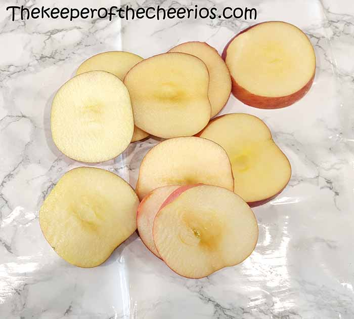 turkey-apple-slices-8