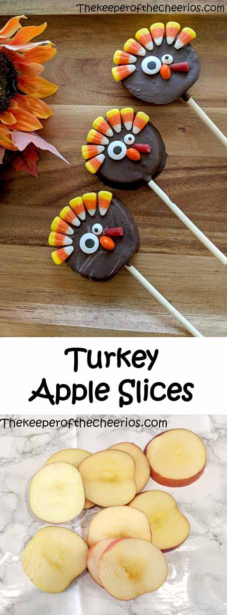 turkey-apple-slices-pn
