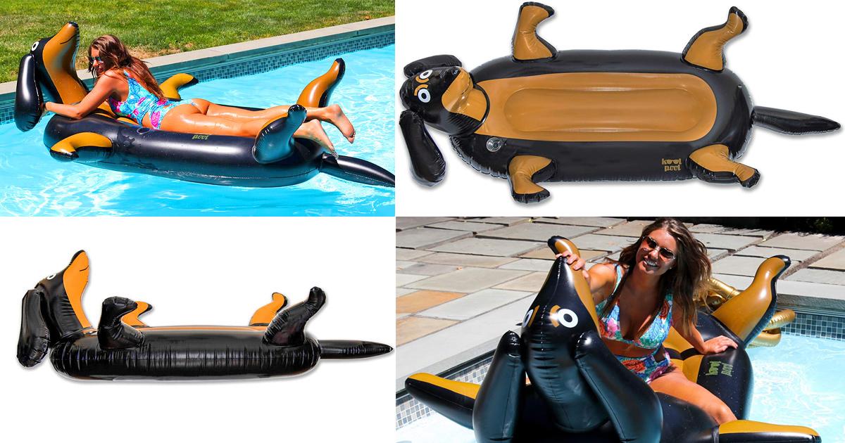 dachshund-pool-float-fb