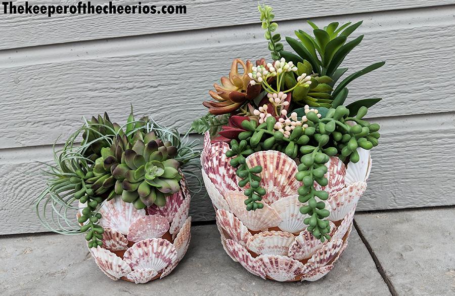 seashell-terracotta-pot-1