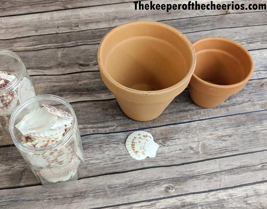 seashell-terracotta-pot-4