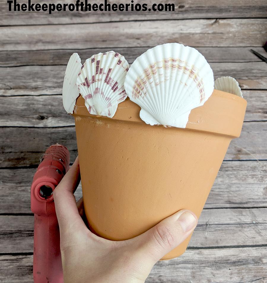 seashell-terracotta-pot-5