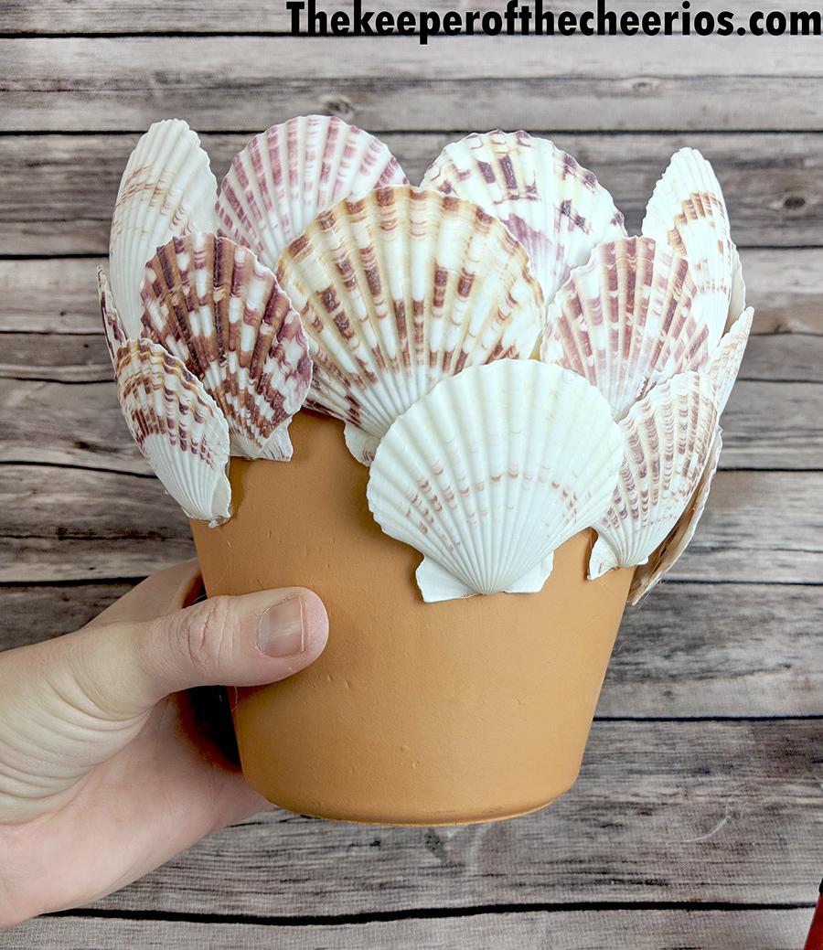 seashell-terracotta-pot-6
