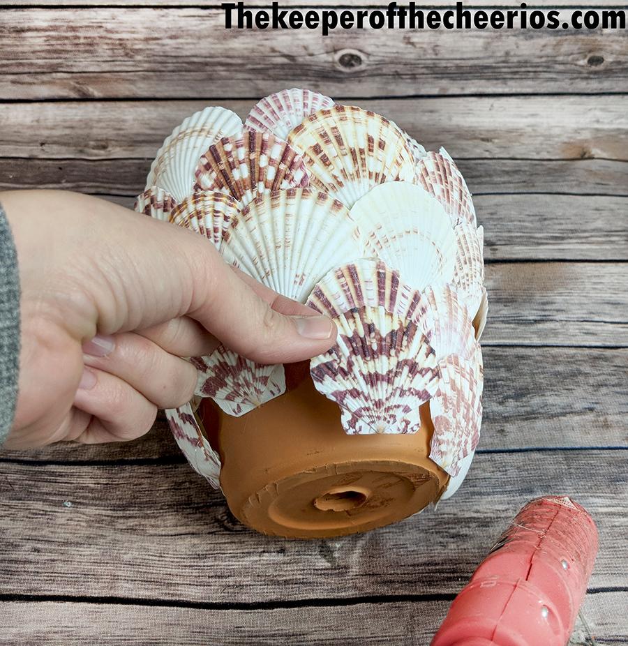 seashell-terracotta-pot-7