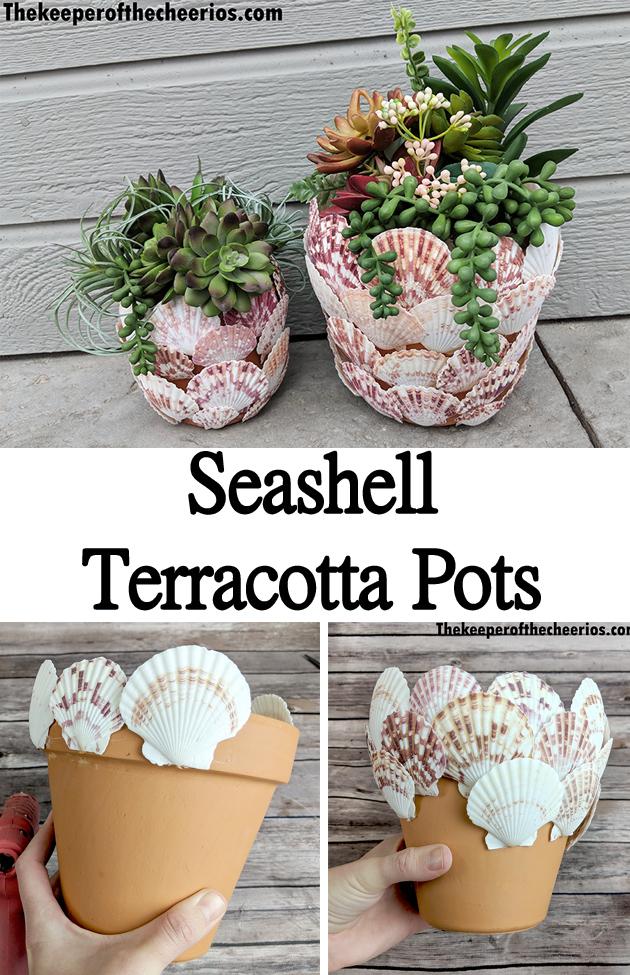 seashell-terracotta-pot-pnn
