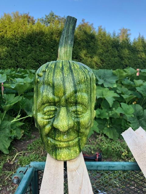 Frankenstein-pumpkins-7