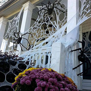 halloween-spiderwebs-beef-netting-smm