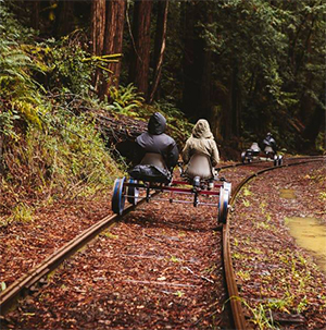 pedal-through-the-redwoods-smm