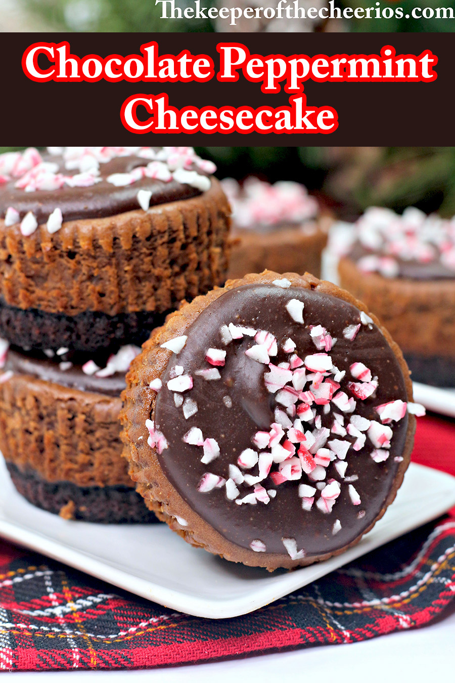 Chocolate-Peppermint-cheesecake-pnn