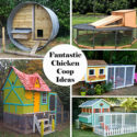 Fantastic Chicken Coop Ideas